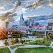 Journée mondiale de l'environnement : opération «Green It Up» menée par l'association Le chemin du bonheur du Tennessee