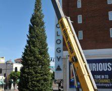 L'Arbre de Noël arrive pour la féérie hivernale de L. Ron Hubbard