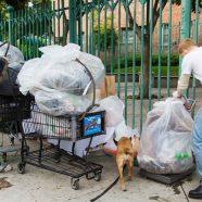 Des bénévoles nettoient Hollywood pour le défilé de Noël 2019