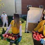 Les bénévoles scientologues fournissent des vivres à un hôpital