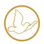 logo jeunes pour les droits de l homme