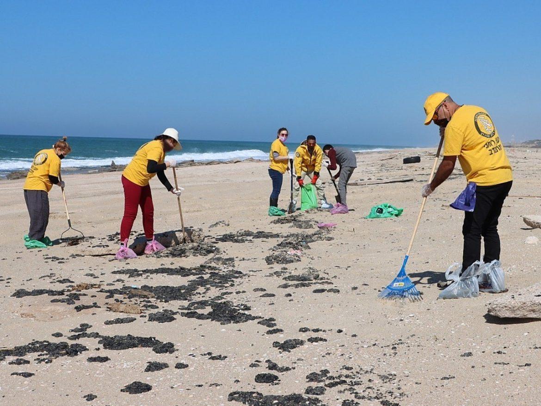 Des bénévoles scientologues aident à nettoyer la plage après une marée noire historique