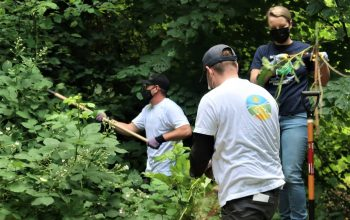 Des bénévoles scientologues de Seattle prennent soin d'un espace vert célèbre